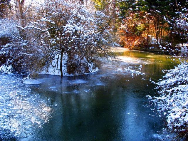 Winterwonderland.preview