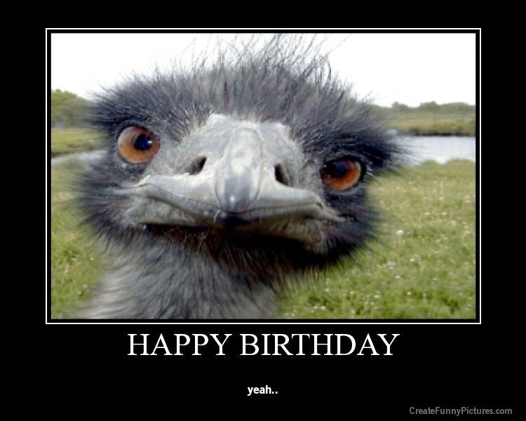 Funny-picture-nefv0bkax7-HAPPY-BIRTHDAY