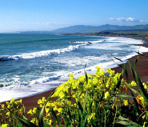 Cambria CA Spring