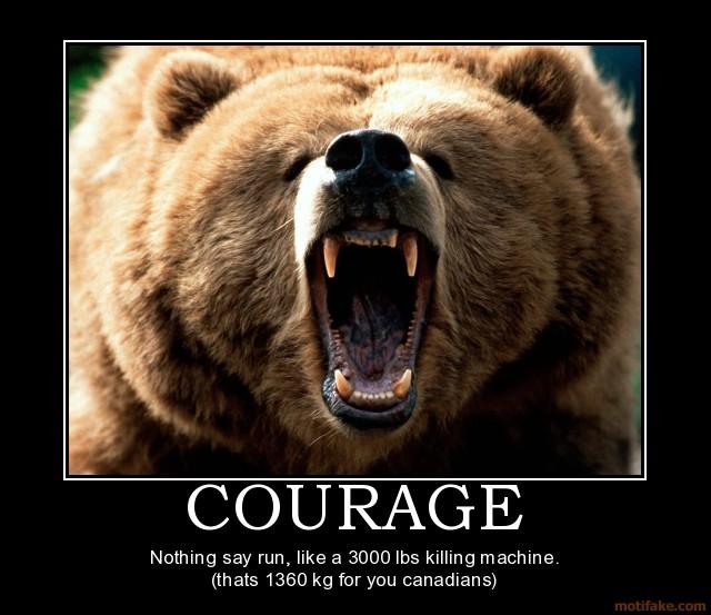 Courage-bear-demotivational-poster-1260907185