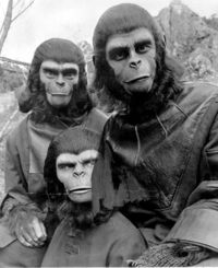 Planet_of_the_apes_1968_apes_3