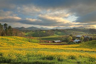 Appalachian-spring-ron-morecraft