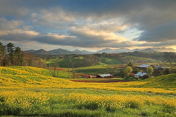 Appalachian-spring-ron-morecraft