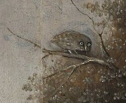 Wayfarer-owl