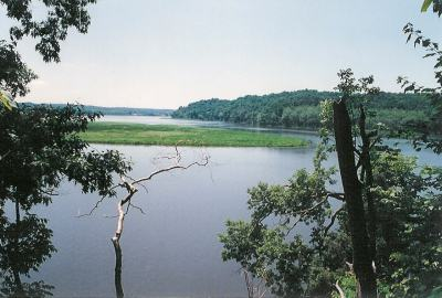 Large-Marsh-at-Crows-Nest-Natural-Area-Preserve