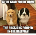 Were-glad-youre-home-the-russians-pooped-in-the-hallway-9821484