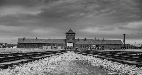 Hayden and Auschwitz