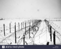 Lines-of-barbed-wire-obstacles-stretch-across-snow-covered-fields-M8RF2W