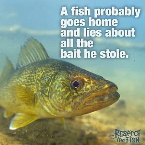 Fishing mind