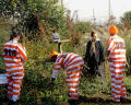 Rikers-inmates