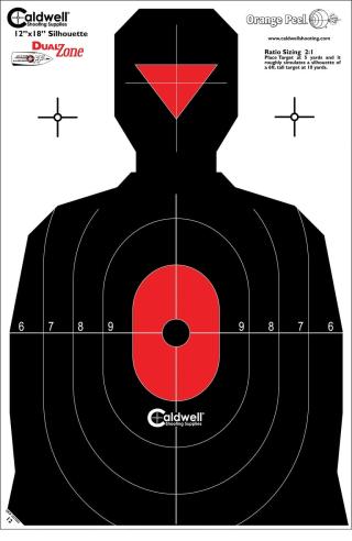 Dual-Zone-target