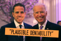 Biden-Plausible-Deniability